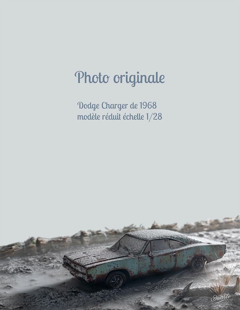 © Tony Duarte - Photographie