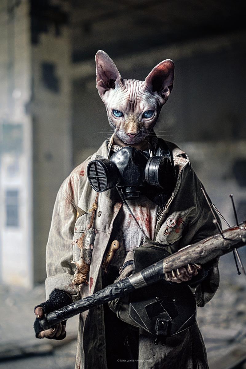 Mouse_Killer